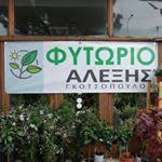 ΦΥΤΩΡΙΟ ΠΑΤΡΑ ΓΚΟΤΣΟΠΟΥΛΟΣ  ΑΛΕΞΙΟΣ